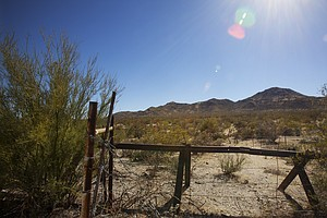 Crossing The Desert: Why Brenda Wanted Border Patrol To F...