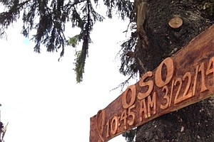 Oso Rescue Workers Erect Memorial To Mudslide Victims