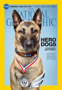 The June cover of National Geographic magazine features Layka, who was shot by enemy forces and took four rounds from an AK-47 while helping to clear an enemy compound in Afghanistan.