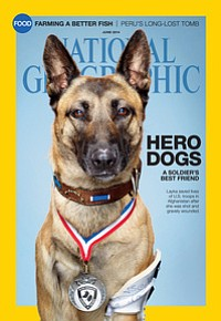The June cover of National Geographic magazine features Layka, who was shot b...