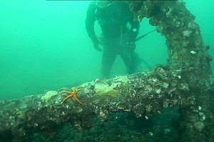 Anchor Recovered In Puget Sound May Have Been Lost In 1792