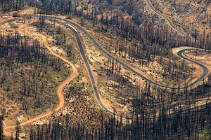 One Year After Calif. Rim Fire, Debate Simmers Over Fores...