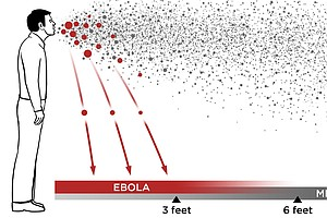 Ebola In The Air: What Science Says About How The Virus S...