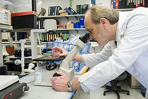 Mistaken Identities Plague Lab Work With Human Cells
