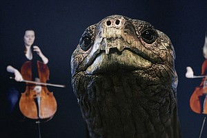 A Musical Memorial For The Face Of Extinction