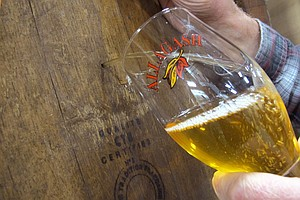 Brewers Gone Wild: Taming Unpredictable Yeast For Flavorful Beer