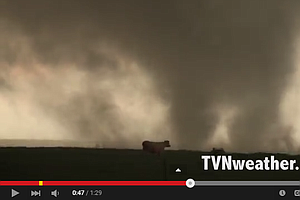 WATCH: Tornado Skirts Past Cows In Oklahoma