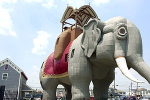 Elephants Never Forget — And At 6 Stories Tall, This One's Unforgettable