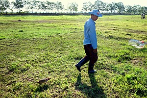 In Cambodia, Rats Are Being Trained To Sniff Out Land Min...