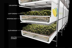 Green Pie In The Sky? Vertical Farming Is On The Rise In ...