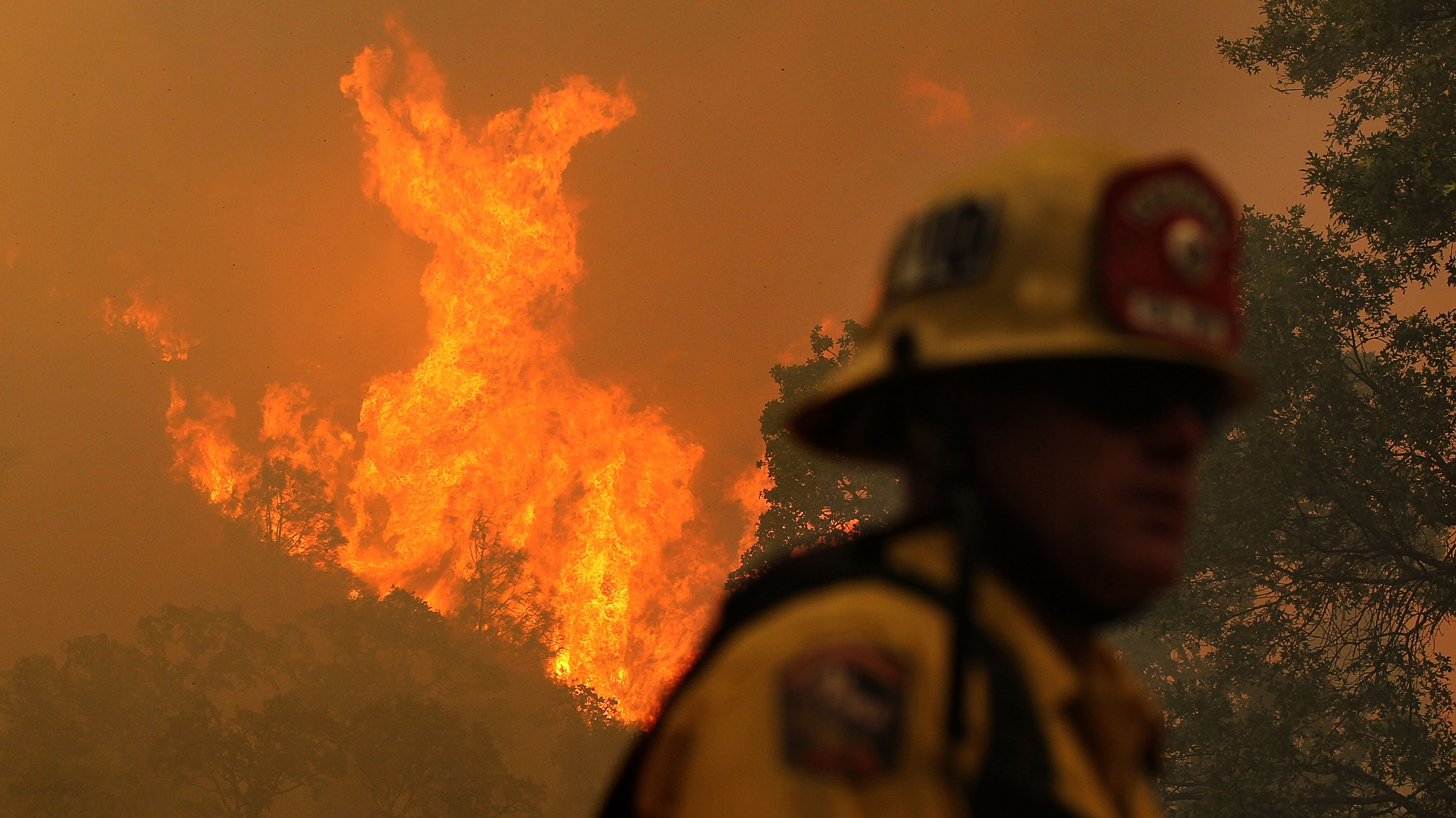 showing extreme fire behavior - HD2699×2024
