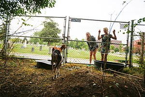 Goats May Be Unwelcome In Zimbabwe's Capital But D.C. Loves Them