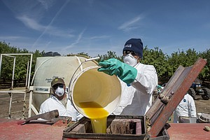 EPA Announces New Rules To Protect Farmworkers From Pesticides