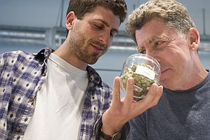 If It Were A Movie, 'Oregon Pot' Would Be No. 4 At The Box Office