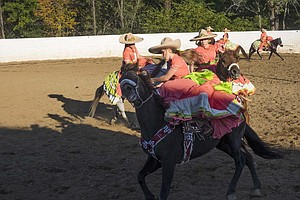 With Sombreros And Sidesaddles, Virginian Women Renew A M...