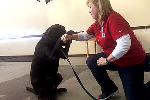 Veterans Say Trained Dogs Help With PTSD, But The VA Won'...