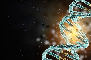 Scientists Say They Hope To Create A Human Genome In The Lab