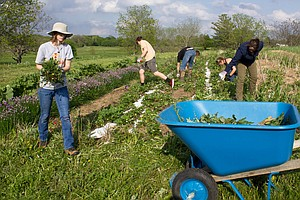 A Student-Run Farm Cultivates Passion For Sustainable Agr...