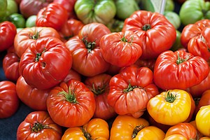 An Old Trick Holds New Promise For Tastier Tomatoes