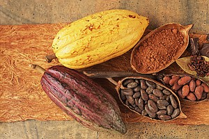 A Chocolate Pill? Scientists To Test Whether Cocoa Extract Boosts Health