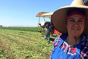 Why California's New Farmworker Overtime Bill May Not Mea...