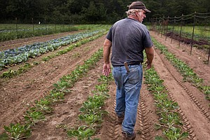Northeast Farmers Grapple With Worst Drought In More Than...