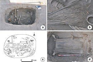 Trove Of Cannabis Plants Found In Ancient Tomb In China