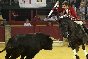 Spanish Top Court Overturns Catalonia's Bullfighting Ban