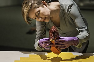 Save The Ruby Slippers: Smithsonian Seeks Funds To Preser...