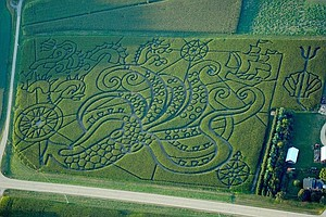 With GPS And Graph Paper, Farmers Find A-maze-ing Ways To...