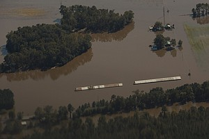 Manure Happens, Especially When Hog Farms Flood