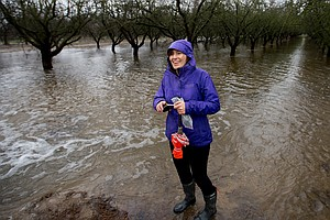 As Rains Soak California, Farmers Test How To Store Water...