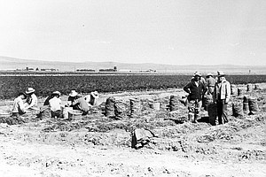 Farming Behind Barbed Wire: Japanese-Americans Remember W...