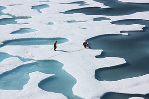 Natural Environmental Swings Cause Up To Half Of Arctic Sea Ice Loss