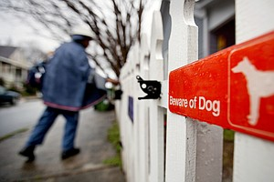 Postal Service Reports Increase In Dog Attacks On Letter Carriers