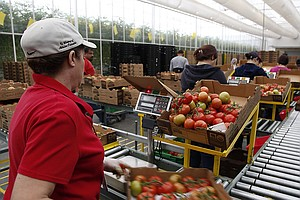 Not Just For Foreign Foods: Fair-Trade Label Comes To U.S. Farms