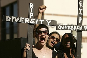 A Theory To Better Understand Diversity, And Who Really B...