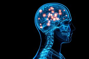 Electrical Stimulation To Boost Memory: Maybe It's All In The Timing