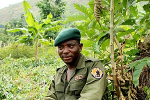 This Ex-Child Soldier Went Undercover To Save The Gorillas