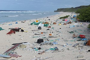 Millions Of Pieces Of Plastic Are Piling Up On An Otherwi...
