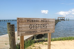 7 Years After BP Oil Spill, Oyster Farming Takes Hold In South