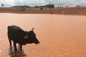 As The Climate Changes, Kenyan Herders Find Centuries-Old...