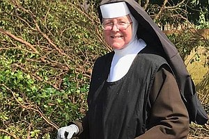 Nun With A Chainsaw Becomes Symbol Of Post-Irma Cleanup: ...