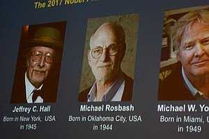 Nobel Prize In Medicine Is Awarded To 3 Americans For Wor...