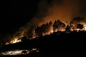 31 Killed In Deadliest Week For Wildfires In California's...