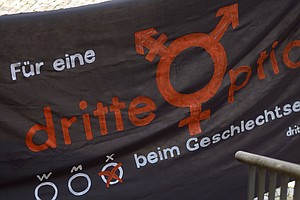 High Court Says Germany's Birth Registry Must Allow Third Gender Option