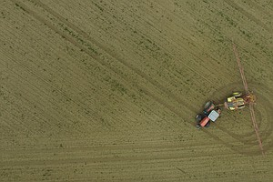 EU Extends Use Of Controversial Weedkiller After German M...