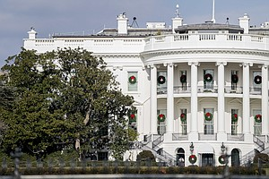Portions Of Ailing White House Magnolia Removed Over Safe...