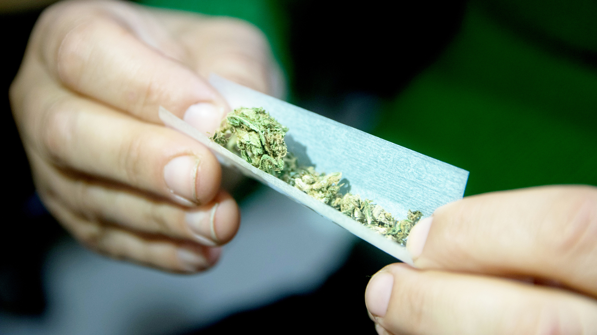 investigating the incline of marijuana usage Trump to lift legal threat to states that permit marijuana use from oversight of the federal investigation into potential collusion between.