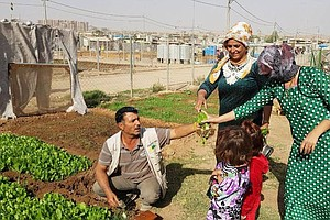 Community And Vegetables Grow Side-By-Side In Syrian Refu...